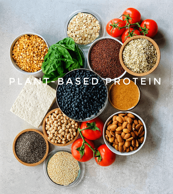 Plant-Based protein pictured Tofu, Chickpeas, Almonds, Chia Seeds, Black Beans, Peanut Butter, Spinach, Oatmeal, Lentils and Oatmeal.  Other sources not pictured edamame, sweet peas and tempeh. Plus so many more not listed and pictured. Does not include tomatoes.