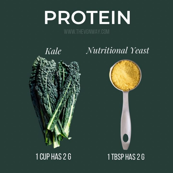 Protein Amounts in Kale & Nutritional Yeast